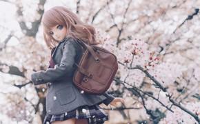 Picture look, tree, doll, Sakura, bag
