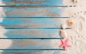 Picture sand, beach, star, shell, summer, beach, wood, sand, marine, starfish, seashells