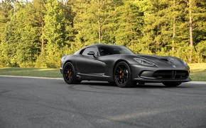 Wallpaper Viper, GTS, Forest, Road, Dodge