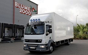Picture white, composition, Parking, van, DAF, DAF, platform, 4x2, DAF LF55.250