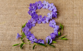 Picture flowers, background, purple, figure, fabric, March 8, date, women's day, periwinkle, Vinca