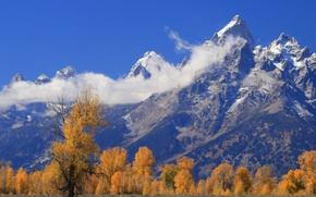 Picture autumn, clouds, trees, mountains, Wyoming, USA, Grand Teton, Grand Teton National Park