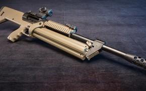 Picture weapons, shotgun, weapon, shotgun, SRM 1216, SRM 1216