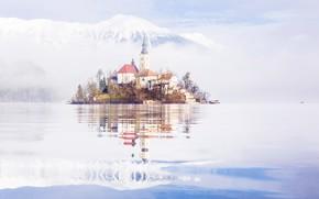 Wallpaper lake, Bled, Slovenia, home, Church, island, mountains, snow