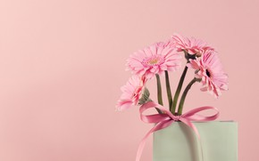 Picture flowers, Vase, gerbera, pink background