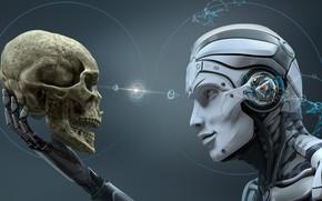 Picture sake, robot, head