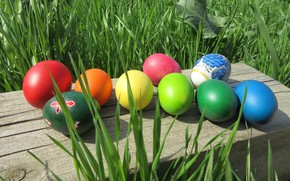 Picture grass, eggs, Easter, eggs dyed, spring 2018, mamala ©