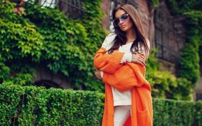 Picture greens, brunette, glasses, the bushes, model, sweater, Krystian Tokar