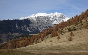 Picture autumn, snow, trees, mountains, France, slope, Alpes-Maritimes, Valberg