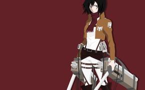 Picture sword, game, weapon, anime, survivor, ken, blade, manga, japanese, bishojo, Shingeki no Kyojin, Mikasa Ackerman, …