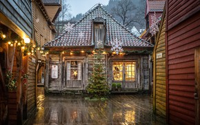 Wallpaper forest, decoration, trees, snowflakes, lights, holiday, toys, new year, home, Christmas, the evening, yard, Norway, ...