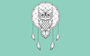 Picture owl, bird, minimalism, light background, owl, Dreamcatcher, dreamcatcher, dream catcher