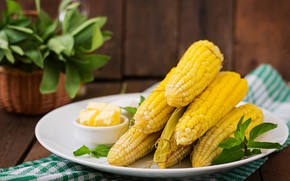 Picture corn, the cob, butter