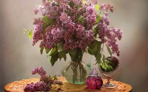 Picture flowers, bouquet, Lilac, vase, still life