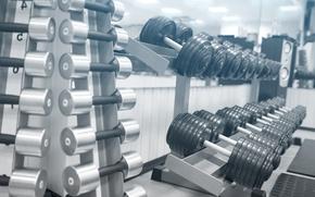 Wallpaper Equipment, distribution, gym, dumbell