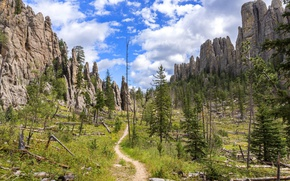 Picture the sky, clouds, trees, stones, rocks, USA, path, branches, South Dakota