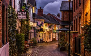 Picture lights, England, home, plants, the evening, lights, lane, Stafford