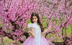 Picture trees, spring, Sakura, dress, girl, girl, flowering, pink, blossom, beautiful, spring