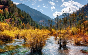 Picture autumn, forest, the sky, clouds, trees, mountains, China, river, Sunny, reserve, Jiuzhaigou