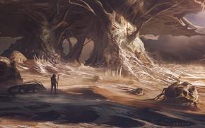 Picture people, being, Desert, Alien world, Juan Pablo Roldan