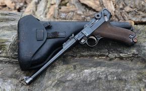 Wallpaper holster, Luger Pistol, Parabellum