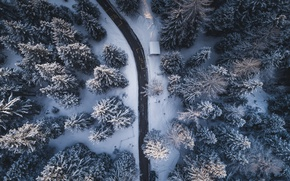 Wallpaper winter, road, forest, trees, nature, the view from the top