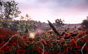 Wallpaper nature, Mac, Electronic Arts, barbed wire, Battlefield 1