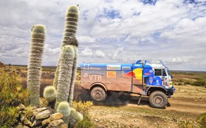 Picture Sport, Speed, Truck, Race, Master, Russia, Kamaz, Rally, Dakar, KAMAZ-master, Dakar, Rally, KAMAZ, Cactus, The …