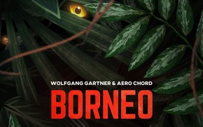 Picture Wolfgang Gartner & Aero Chord, Borneo, Cover, Music, Monstercat