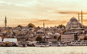 Picture the sky, sunset, birds, Strait, home, tower, temple, boats, promenade, Istanbul, Turkey, piers, The blue …