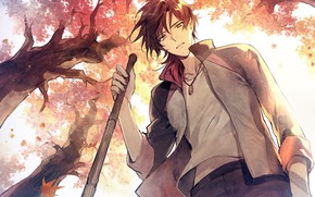 Picture autumn, art, guy, Touken ranbu
