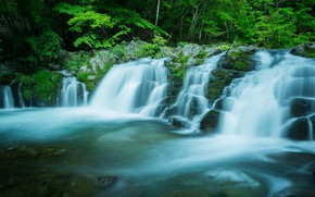 Picture forest, summer, water, trees, branches, stones, waterfall, stream, cascade, pond