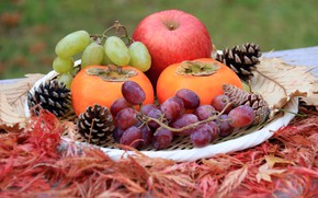 Picture berries, Apple, grapes, Fruit, persimmon