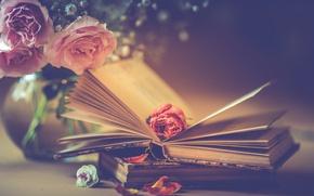 Wallpaper roses, bouquet, petals, books, style, flowers, Bud