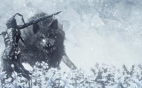 Picture sword, game, flower, armor, ken, animal, wolf, blade, Dark Souls, hana, Dark Souls 3, Dark …