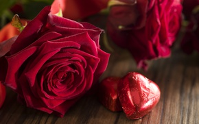 Wallpaper red roses, valentine`s day, love, roses, romantic, gift, hearts, heart, red