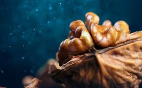 Picture macro, bokeh, walnut