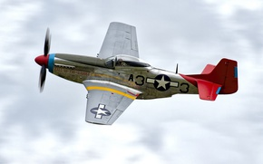 Wallpaper fighter, The second world war, single, P-51D, period, long-range