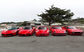 Picture Ferrari, F40, Enzo, Italia, RED, F50, LaFerrari, 288 GTO