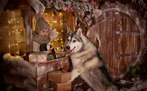 Picture joy, holiday, new year, dog, boy