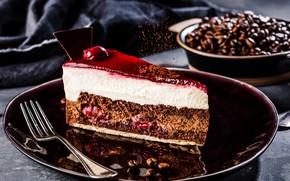Picture cherry, plate, cake, cream, chocolate, jelly