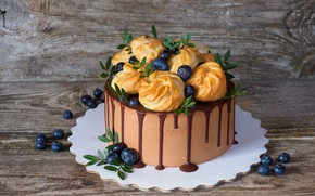 Picture berries, chocolate, mint, cakes, Cake