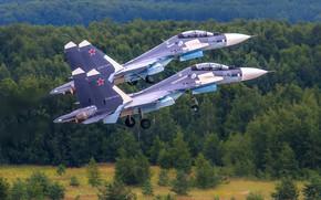 Picture fighter, multipurpose, Su-30CM, Su-30 SM