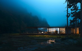 Picture forest, night, house