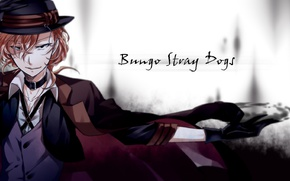 Picture anime, art, Bungou Stray Dogs, Stray dogs literary geniuses