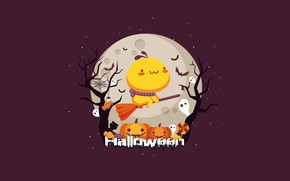 Picture night, holiday, the moon, Halloween