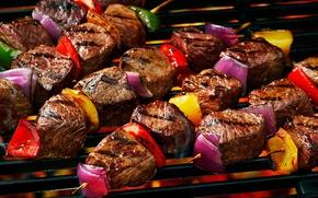 Picture meat, vegetables, kebab