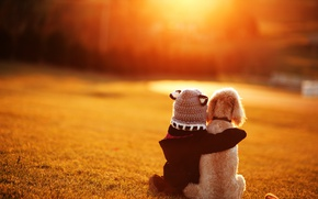 Picture dog, friendship, girl, friends, child, bokeh