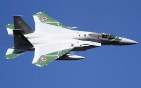 Picture Mitsubishi, McDonnell Douglas, F-15J
