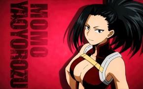Picture 007, anime, hero, manga, japanese, by sanoboss, Boku no Hero Academy, My Hero Academia